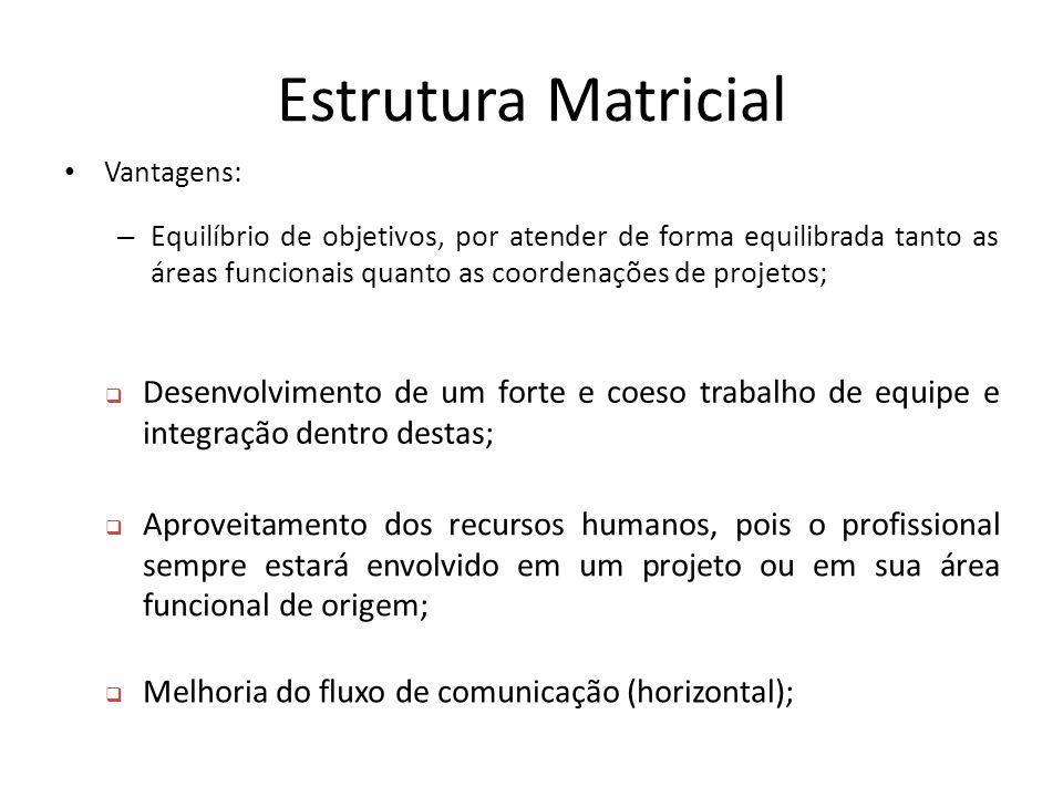 Estrutura Matricial Vantagens: – Equilíbrio de objetivos, por atender de forma equilibrada tanto as áreas funcionais quanto as coordenações de projeto