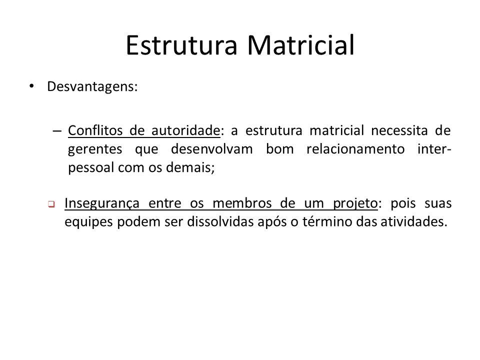 Estrutura Matricial Desvantagens: – Conflitos de autoridade: a estrutura matricial necessita de gerentes que desenvolvam bom relacionamento inter- pes