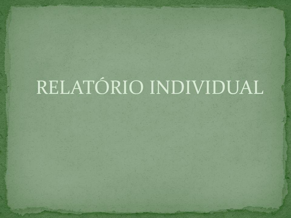 RELATÓRIO INDIVIDUAL