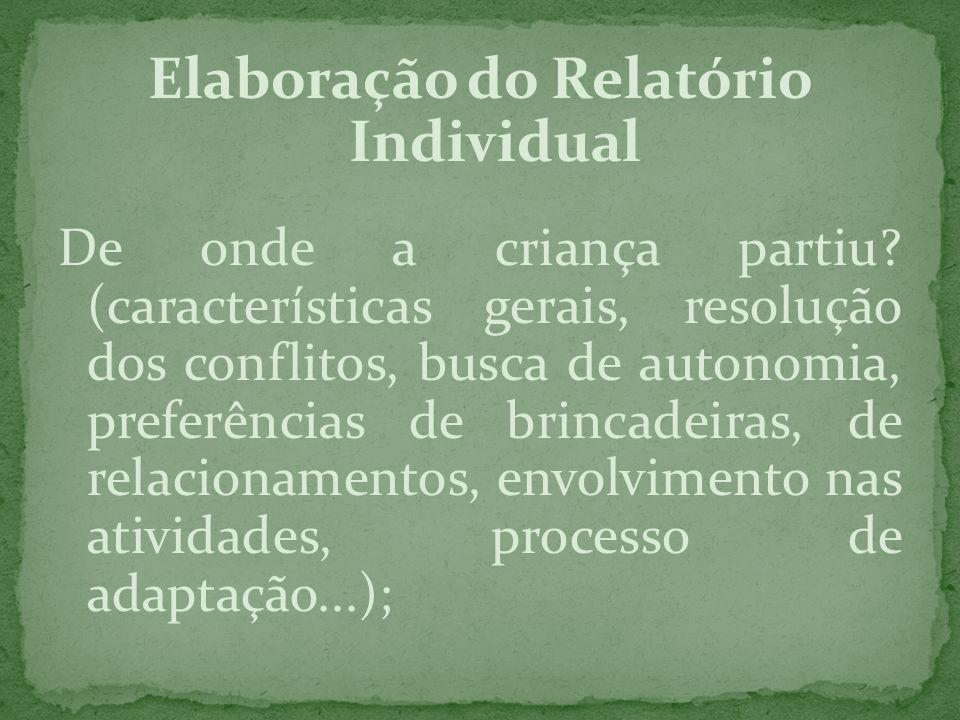 Elaboração do Relatório Individual De onde a criança partiu? (características gerais, resolução dos conflitos, busca de autonomia, preferências de bri