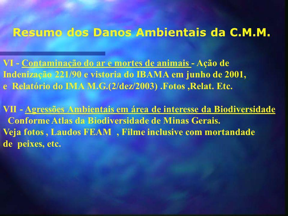Resumo dos Danos Ambientais da C.M.M.