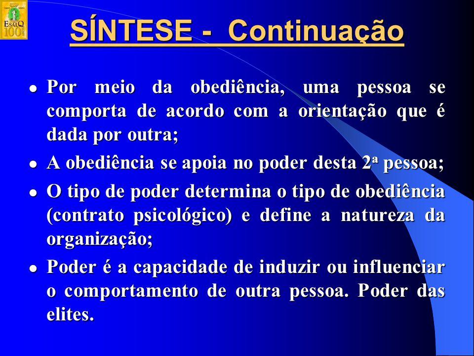 SÍNTESE Modelo Weberiano do tipo ideal próprio para: Modelo Weberiano do tipo ideal próprio para: – empresa; – governo; Não a todas organizações, pois
