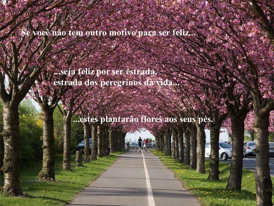 Se você não tem outro motivo para ser feliz......seja feliz por ser estrada, estrada dos peregrinos da vida......estes plantarão flores aos seus pés.
