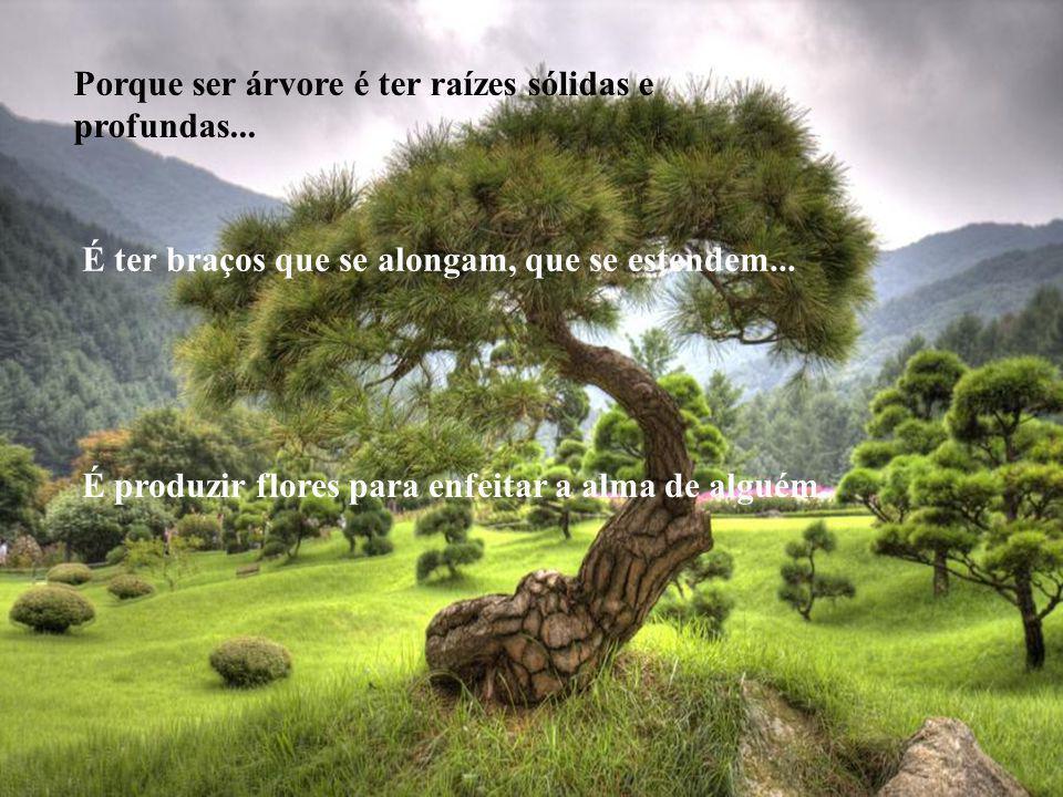 Porque ser árvore é ter raízes sólidas e profundas...