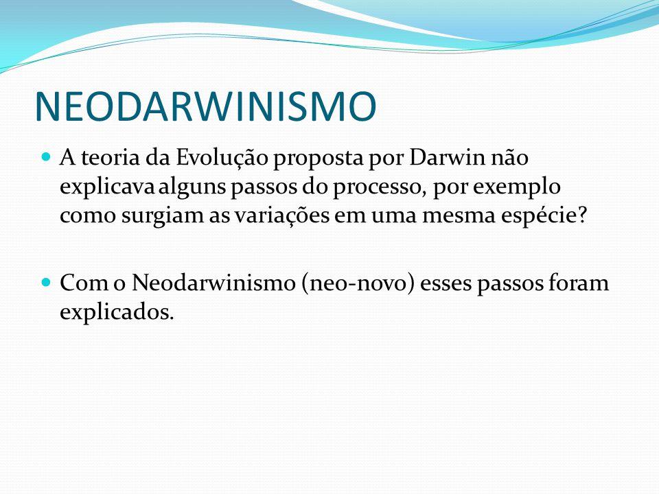 NEODARWINISMO A teoria da Evolução proposta por Darwin não explicava alguns passos do processo, por exemplo como surgiam as variações em uma mesma esp