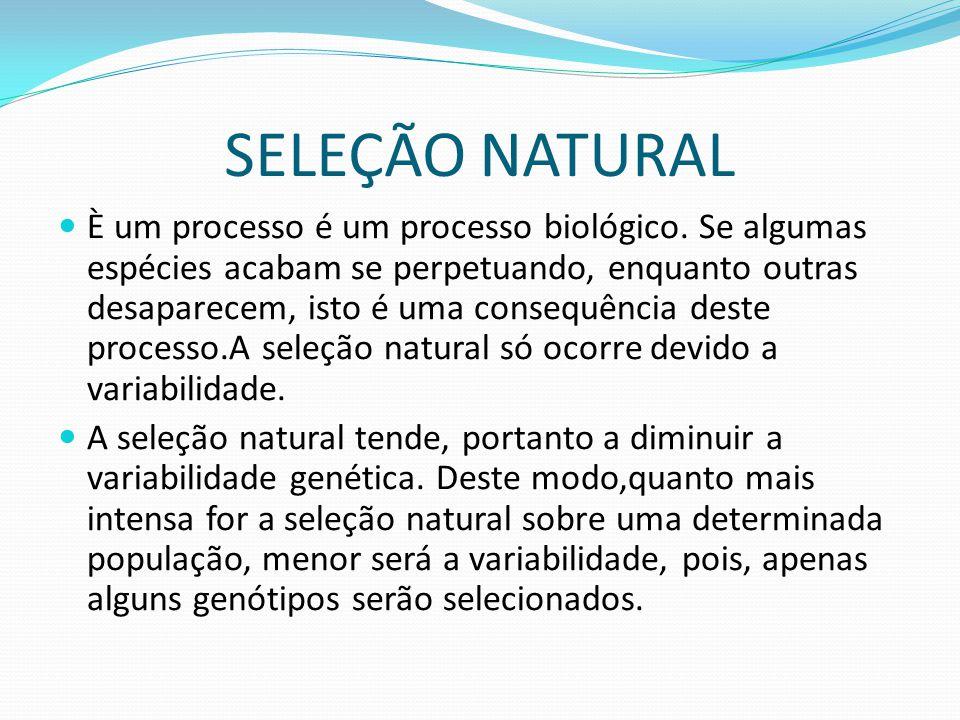 SELEÇÃO NATURAL È um processo é um processo biológico. Se algumas espécies acabam se perpetuando, enquanto outras desaparecem, isto é uma consequência