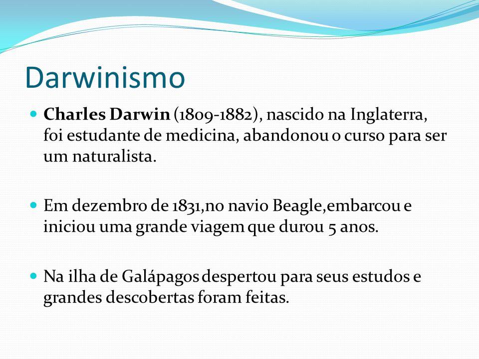 Darwinismo Charles Darwin (1809-1882), nascido na Inglaterra, foi estudante de medicina, abandonou o curso para ser um naturalista. Em dezembro de 183