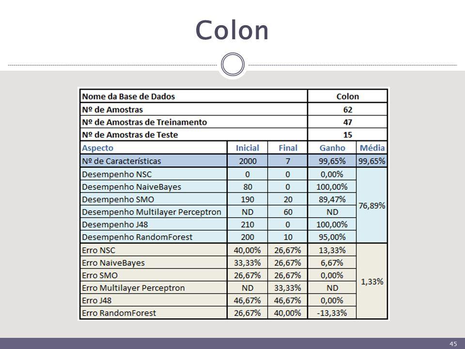 Colon 45