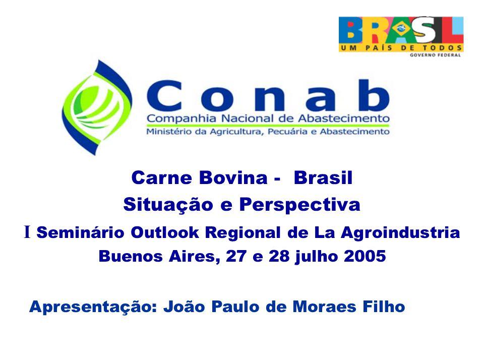 Carne Bovina - Brasil Situação e Perspectiva I Seminário Outlook Regional de La Agroindustria Buenos Aires, 27 e 28 julho 2005 Apresentação: João Paulo de Moraes Filho