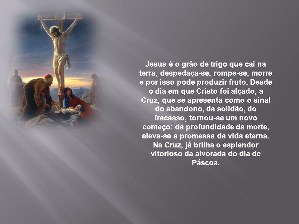 """Entregando a sua existência """"doada"""" nas mãos do Pai, Ele sabe que a sua morte torna-se fonte de vida, como a semente na terra que deve romper-se para"""