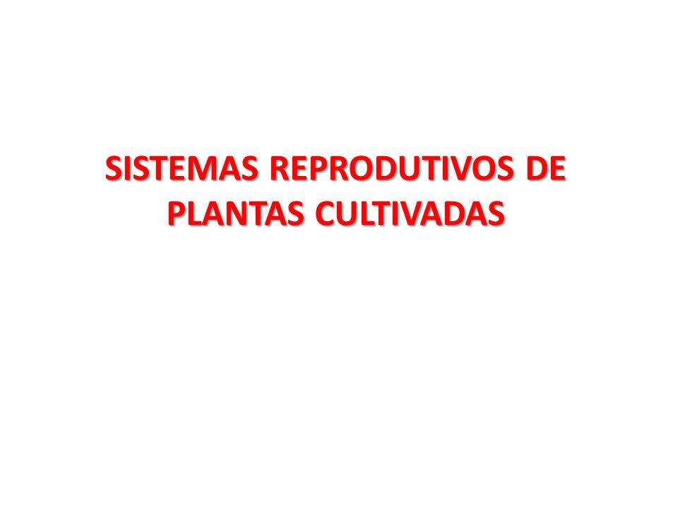 SISTEMAS REPRODUTIVOS DE PLANTAS CULTIVADAS