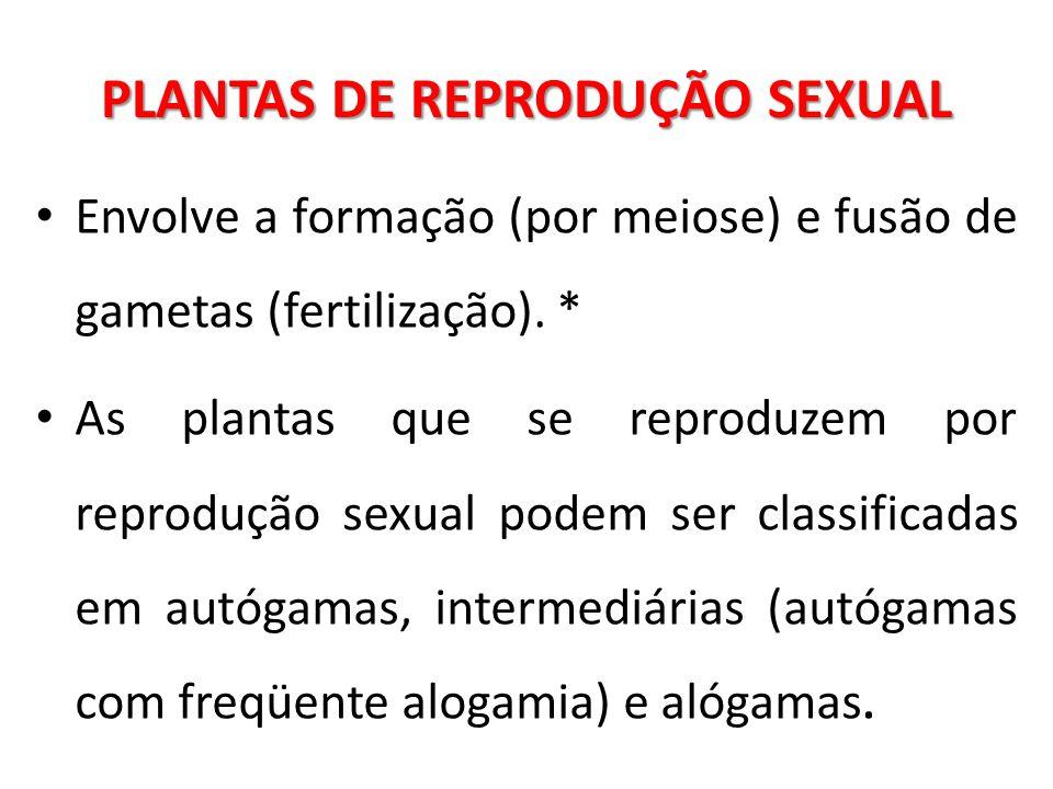 PLANTAS DE REPRODUÇÃO SEXUAL Envolve a formação (por meiose) e fusão de gametas (fertilização). * As plantas que se reproduzem por reprodução sexual p