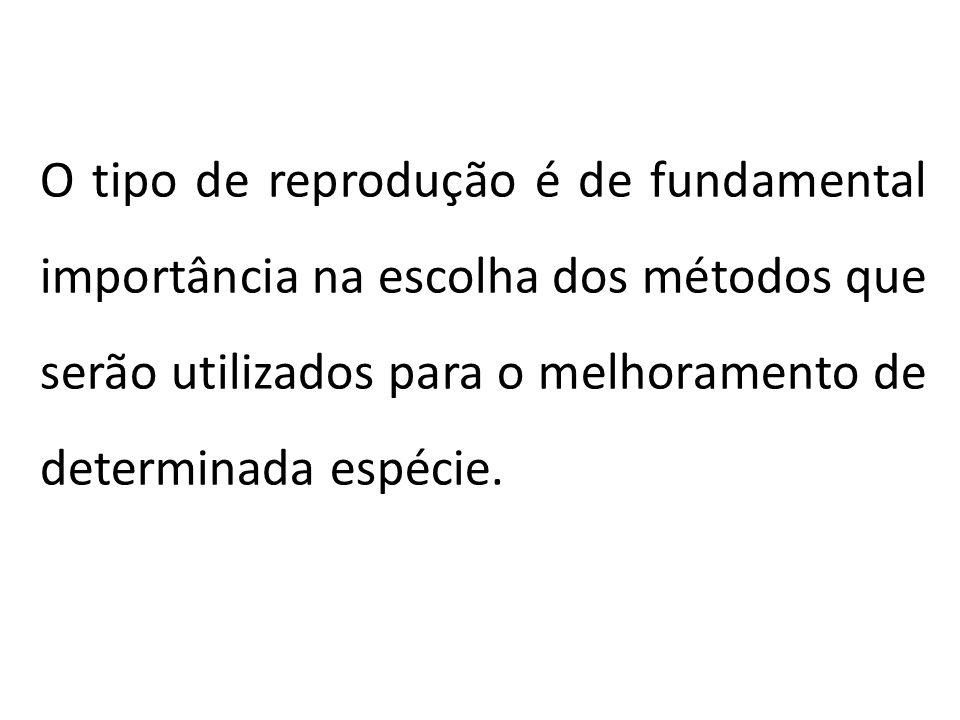 TIPOS DE REPRODUÇÃO Existem dois modos de reprodução de plantas: Reprodução sexual: Reprodução sexual: se caracteriza pela formação de gametas (meiose), fusão dos gametas masculino e feminino (fertilização) para formação de um embrião e posteriormente da semente.