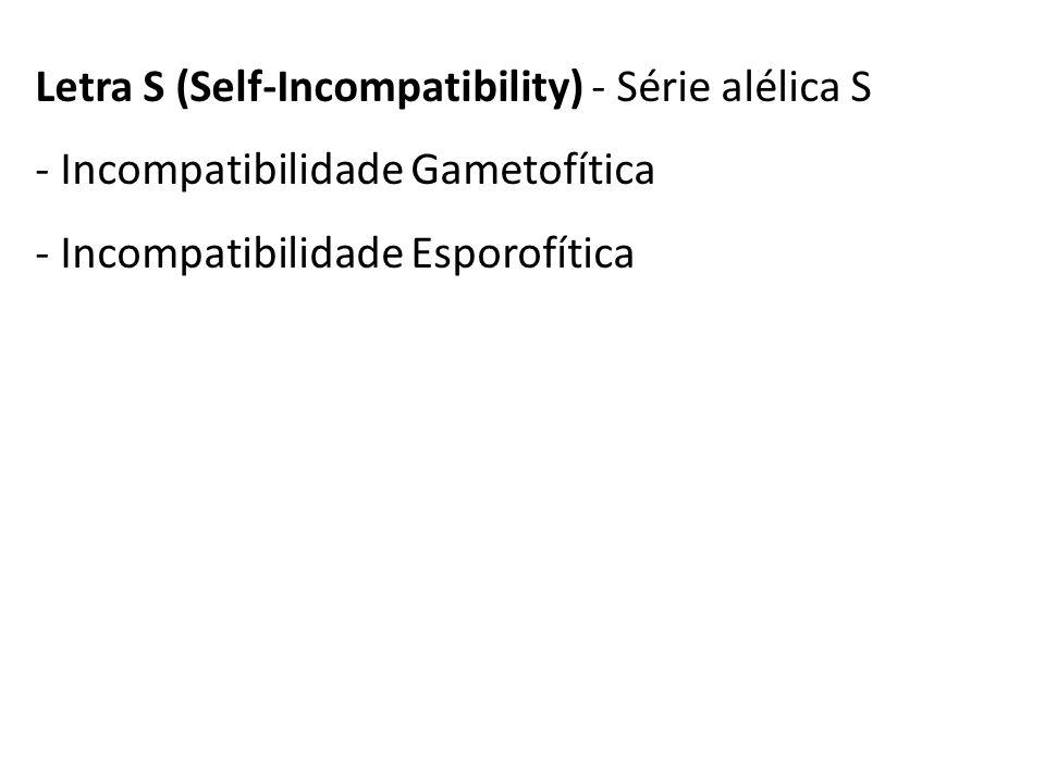 Letra S (Self-Incompatibility) - Série alélica S - Incompatibilidade Gametofítica - Incompatibilidade Esporofítica