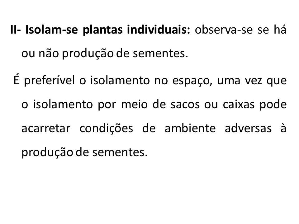 II- Isolam-se plantas individuais: observa-se se há ou não produção de sementes. É preferível o isolamento no espaço, uma vez que o isolamento por mei