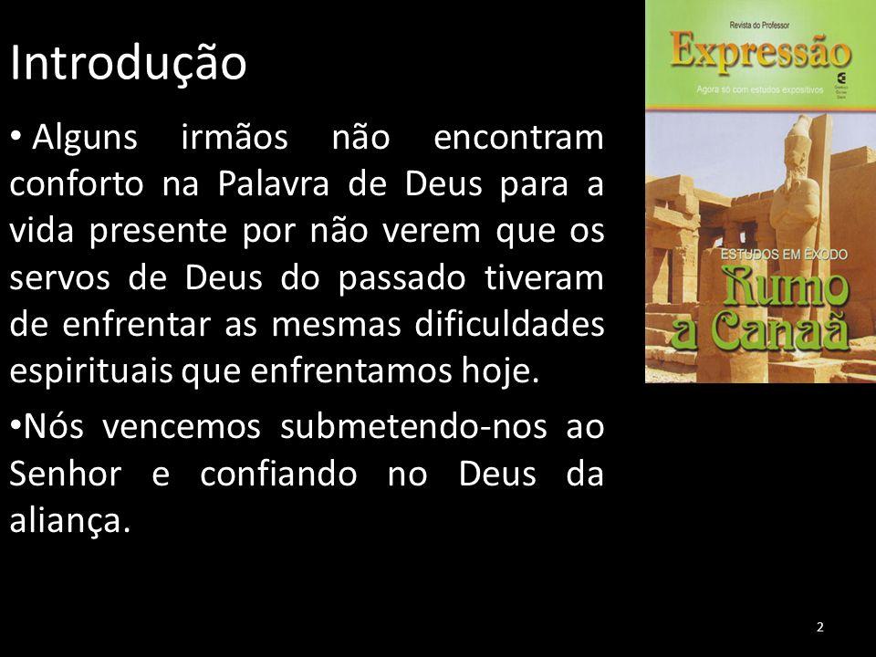 Introdução Alguns irmãos não encontram conforto na Palavra de Deus para a vida presente por não verem que os servos de Deus do passado tiveram de enfr