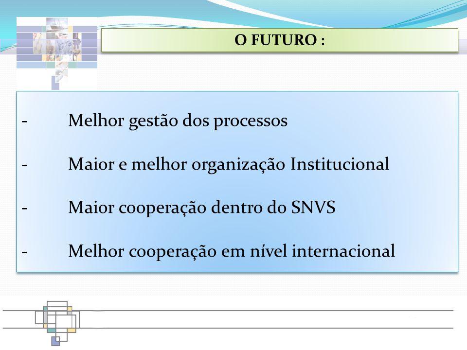 O FUTURO : -Melhor gestão dos processos -Maior e melhor organização Institucional -Maior cooperação dentro do SNVS -Melhor cooperação em nível interna