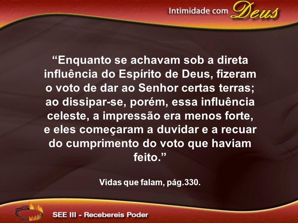 """""""Enquanto se achavam sob a direta influência do Espírito de Deus, fizeram o voto de dar ao Senhor certas terras; ao dissipar-se, porém, essa influênci"""