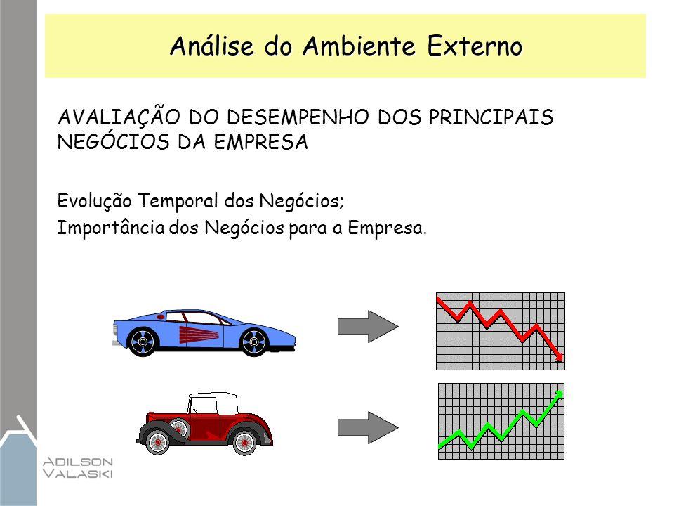 Análise do Ambiente Externo AVALIAÇÃO DO DESEMPENHO DOS PRINCIPAIS NEGÓCIOS DA EMPRESA Evolução Temporal dos Negócios; Importância dos Negócios para a