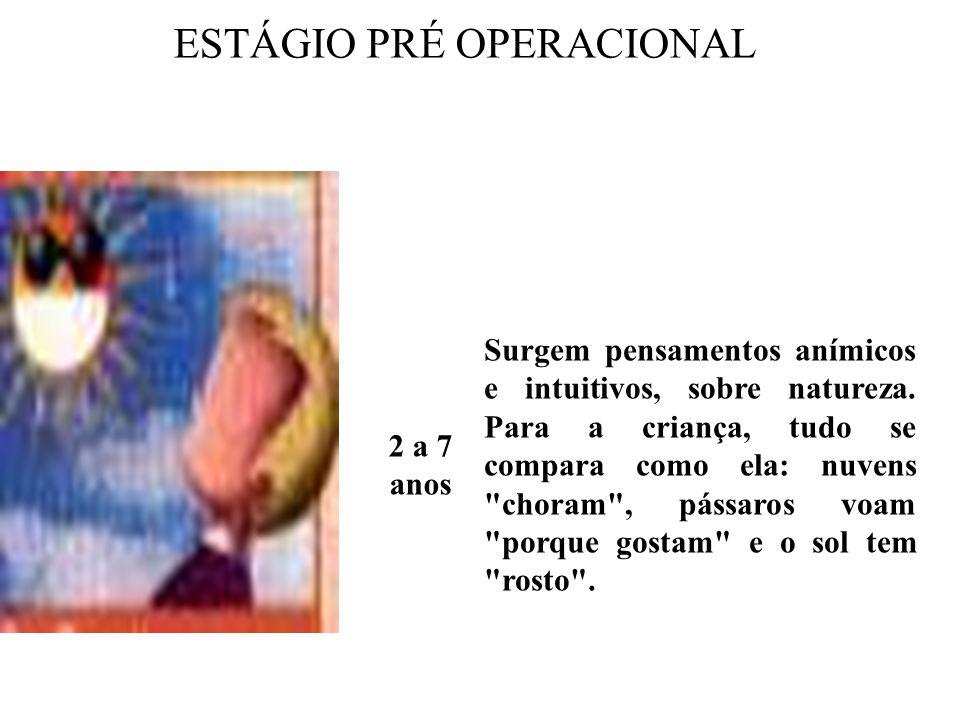 ESTÁGIO PRÉ OPERACIONAL 2 A 7 ANOS