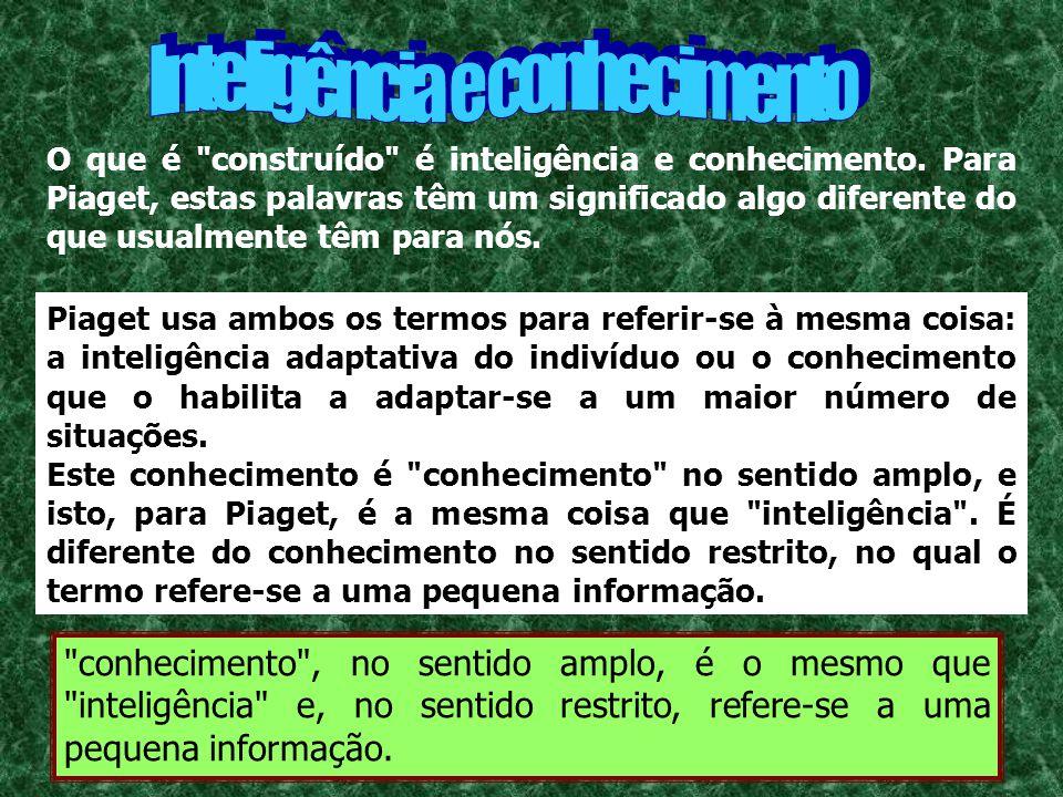A descrição do desenvolvimento intelectual passando pelos estágios sensório-motor, pré-operacional, das operações concretas e das operações formais é