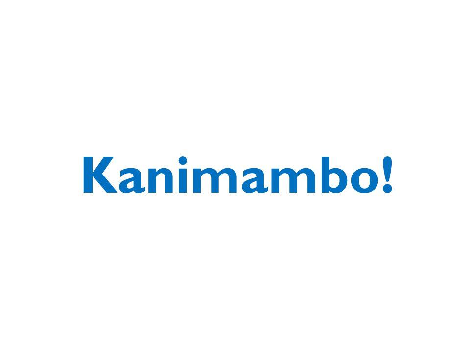 18Moçambique: Seminário sobre Crescimento, Transformação Económica e Criação de Empregos Kanimambo!
