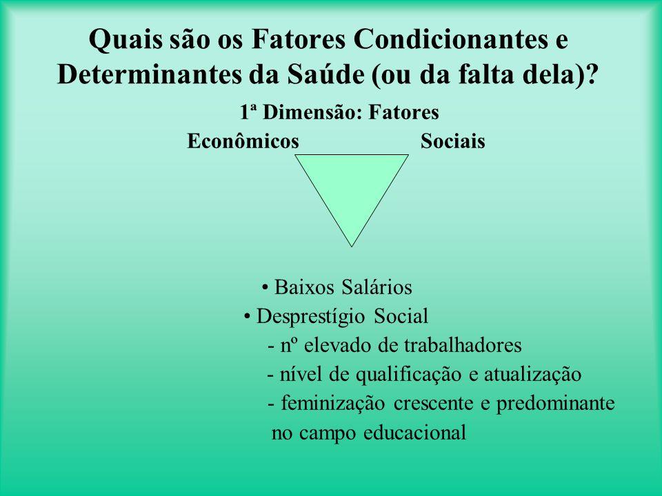 Quais são os Fatores Condicionantes e Determinantes da Saúde (ou da falta dela).