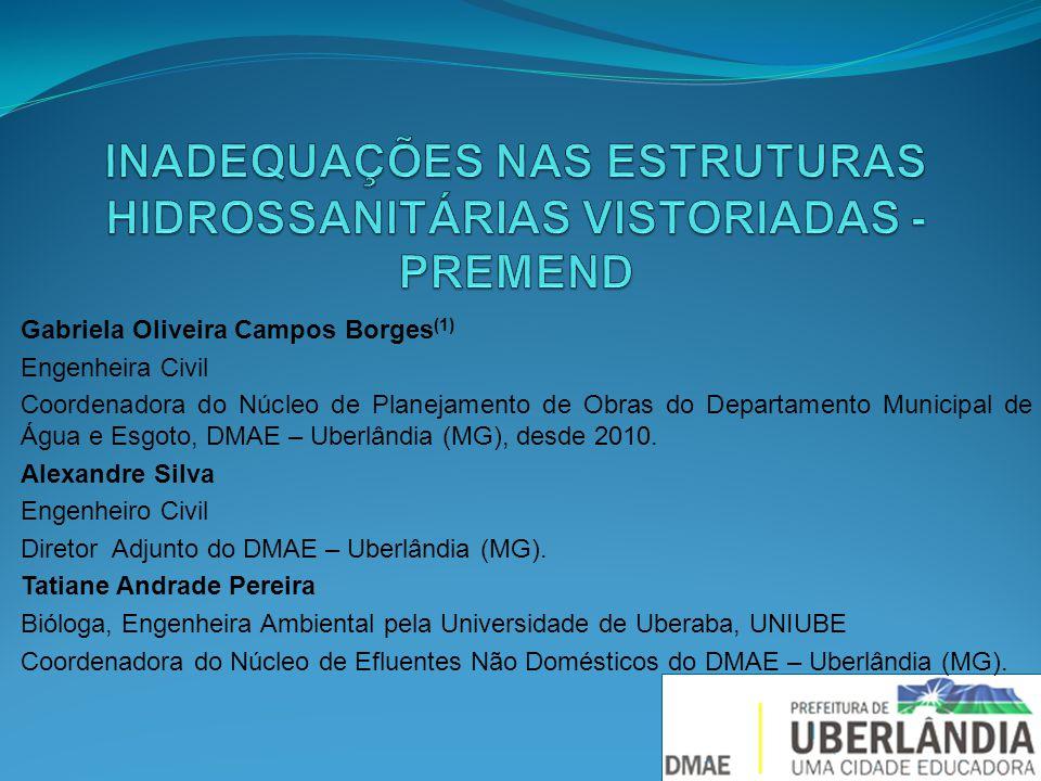 Gabriela Oliveira Campos Borges (1) Engenheira Civil Coordenadora do Núcleo de Planejamento de Obras do Departamento Municipal de Água e Esgoto, DMAE – Uberlândia (MG), desde 2010.