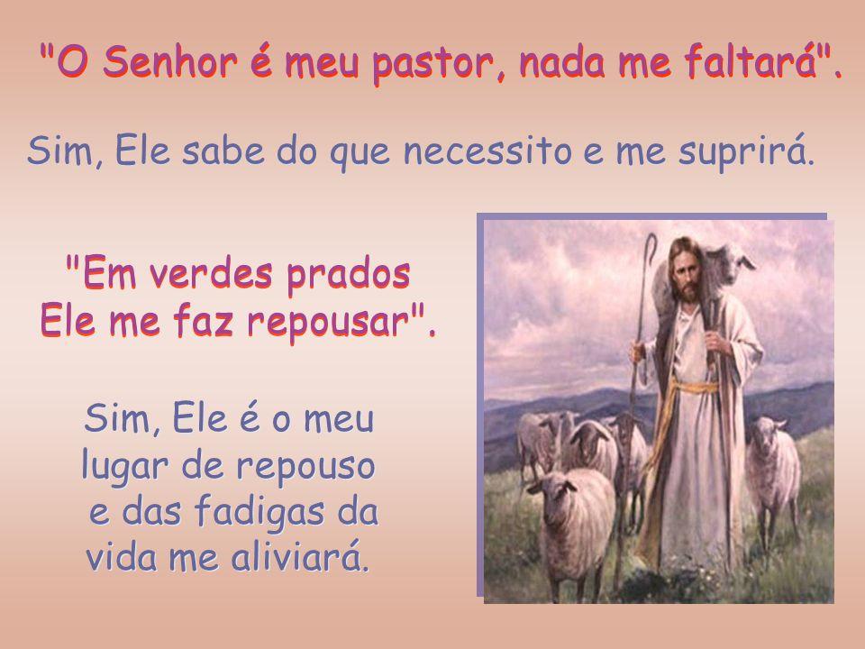 """E possamos dizer """"Sim"""" a cada palavra desse Salmo 22 como expressão da nossa certeza no cuidado do Bom Pastor. E possamos dizer """"Sim"""" a cada palavra d"""