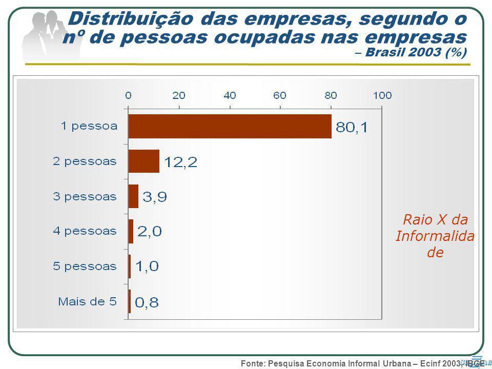 Distribuição das empresas, segundo o nº de pessoas ocupadas nas empresas – Brasil 2003 (%) Raio X da Informalida de Fonte: Pesquisa Economia Informal Urbana – Ecinf 2003, IBGE