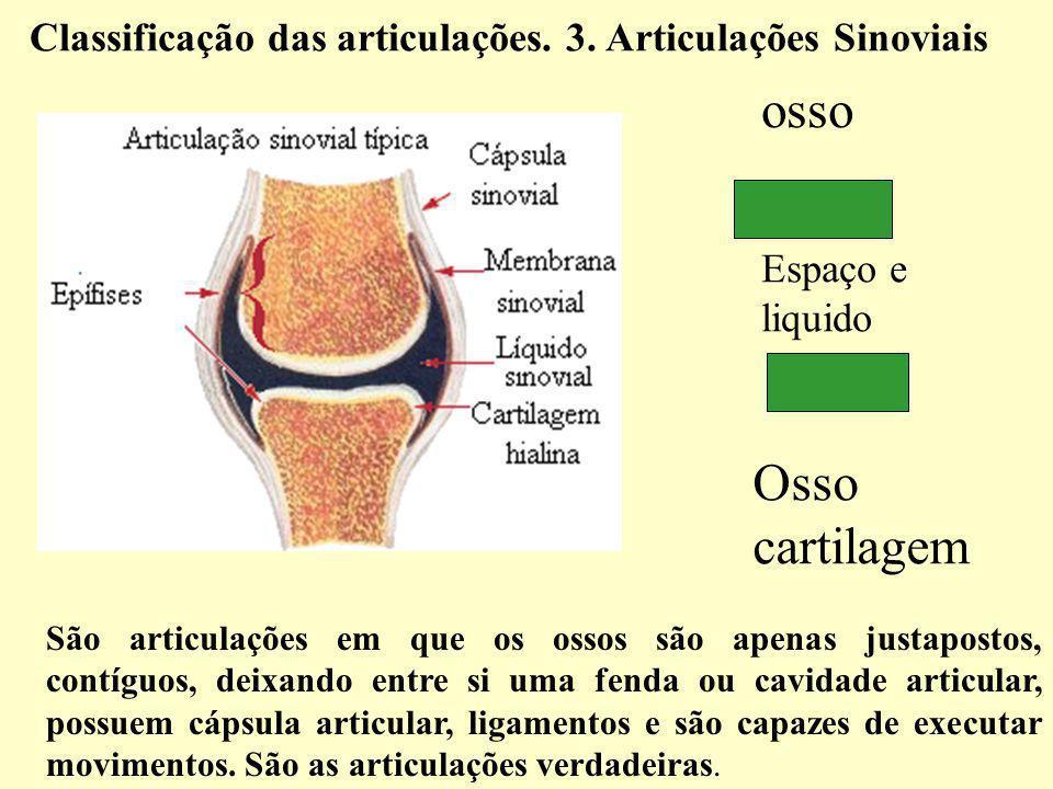São articulações em que os ossos são apenas justapostos, contíguos, deixando entre si uma fenda ou cavidade articular, possuem cápsula articular, ligamentos e são capazes de executar movimentos.
