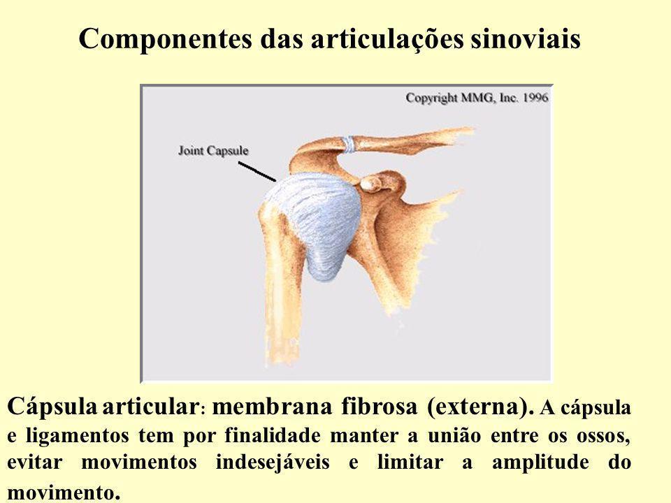 Componentes das articulações sinoviais Cápsula articular : membrana fibrosa (externa).