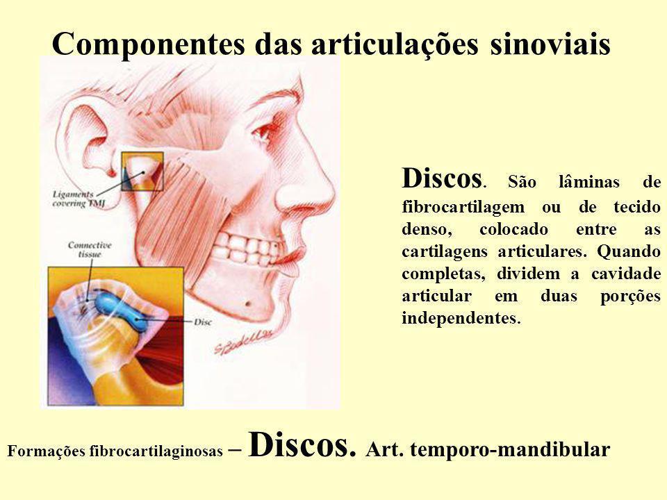 Formações fibrocartilaginosas – Discos.Art. temporo-mandibular Discos.