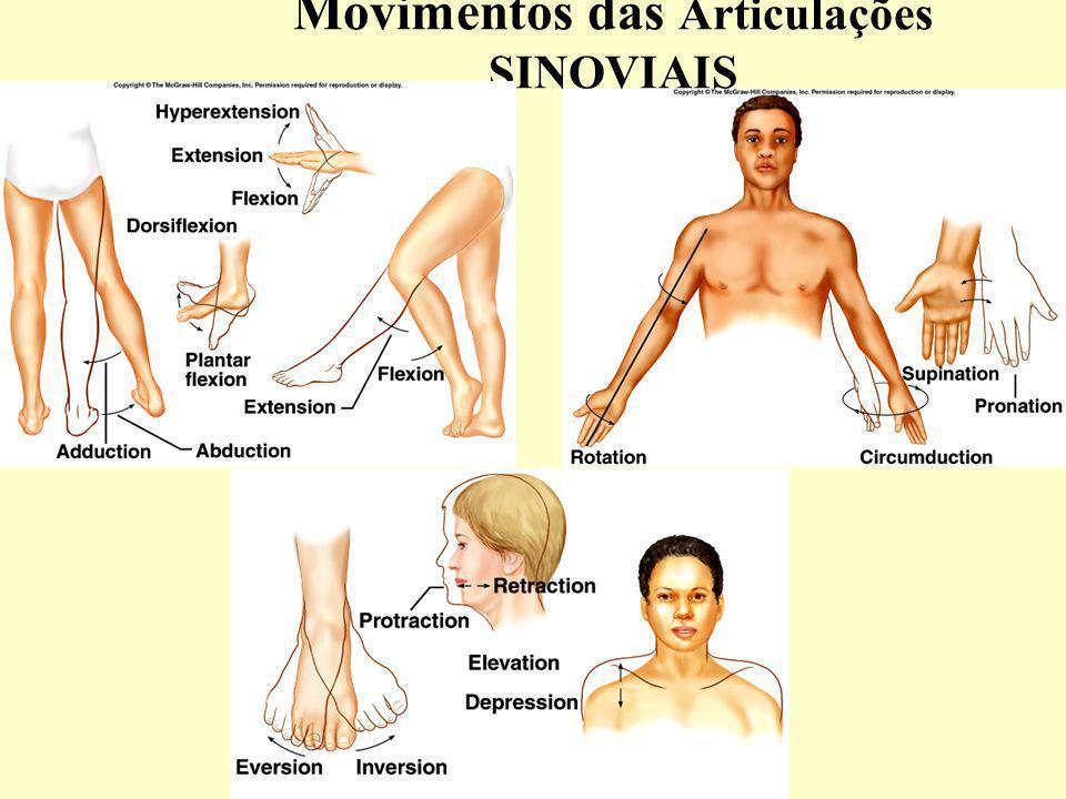 Movimentos das Articulações SINOVIAIS