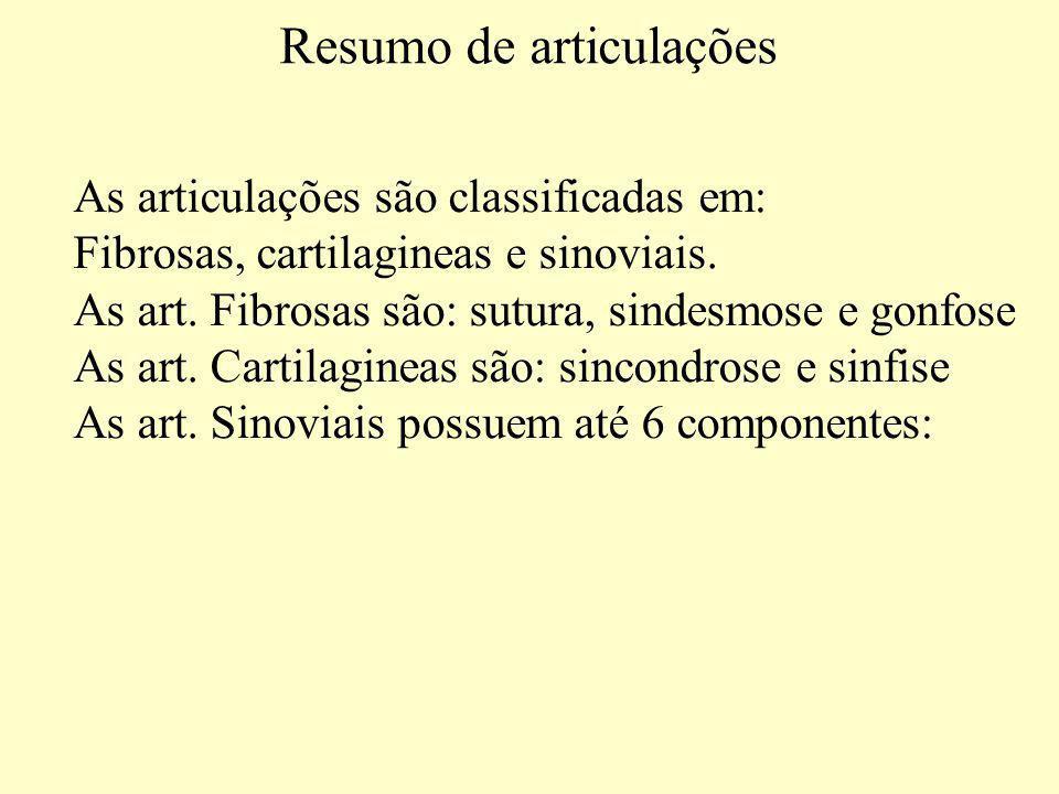 Resumo de articulações As articulações são classificadas em: Fibrosas, cartilagineas e sinoviais.