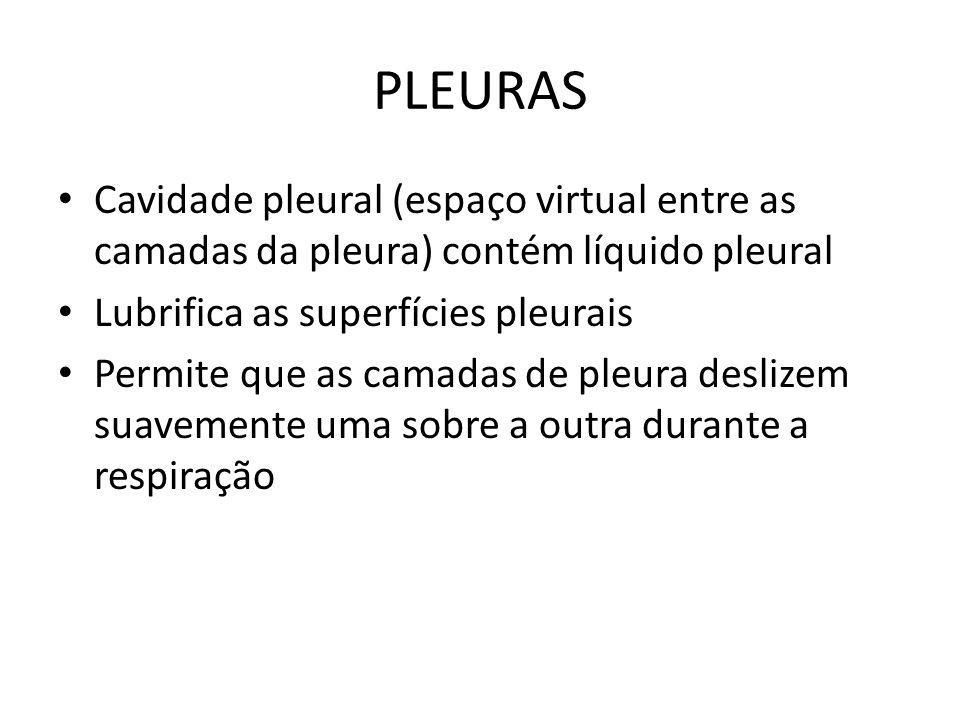 PLEURAS Cavidade pleural (espaço virtual entre as camadas da pleura) contém líquido pleural Lubrifica as superfícies pleurais Permite que as camadas d