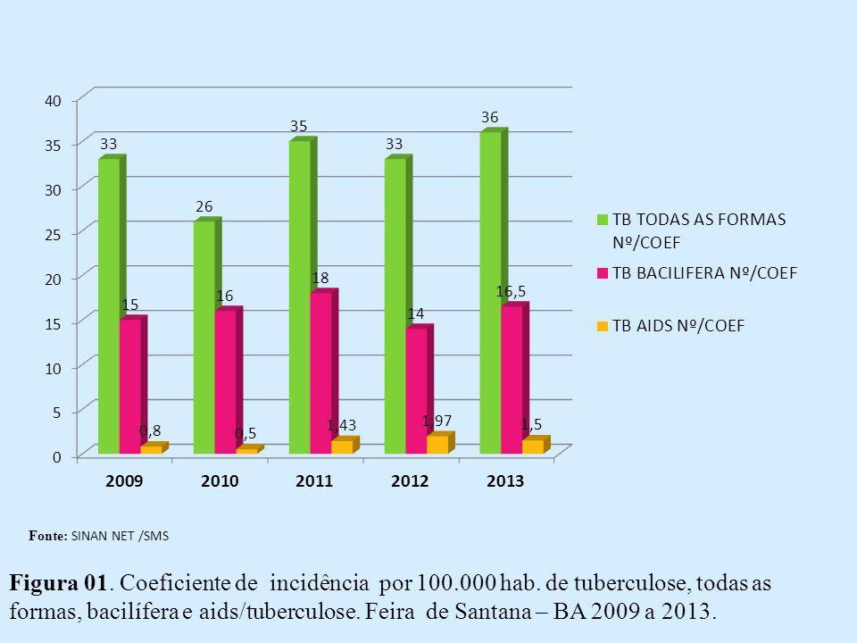 Fonte: SINAN NET /SMS Figura 01. Coeficiente de incidência por 100.000 hab.