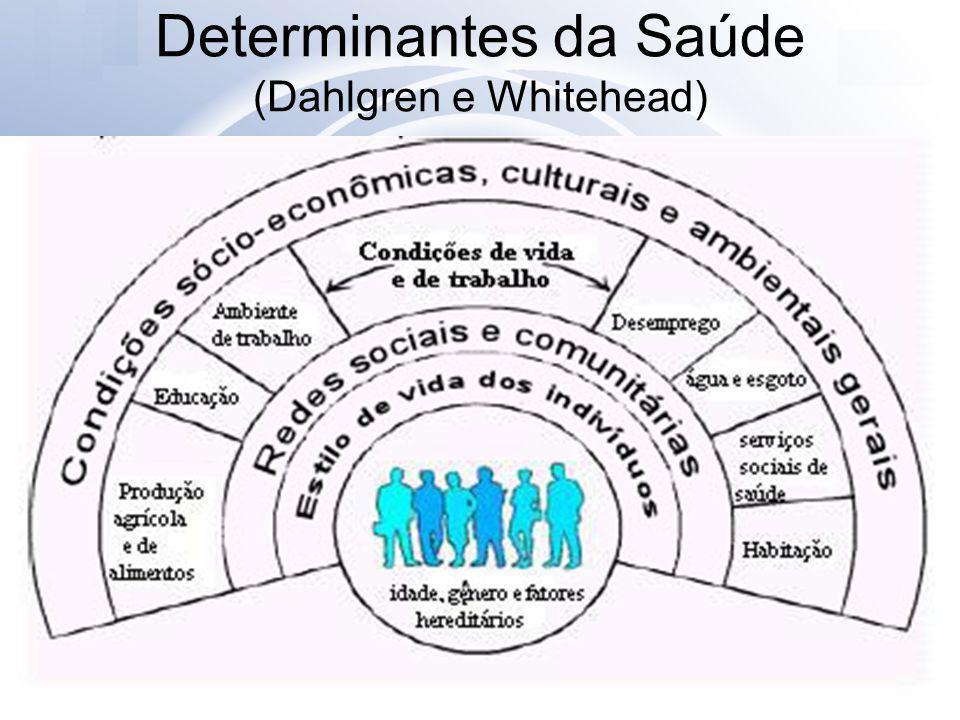 Definições Desigualdades: diferenças sistemáticas na situação de saúde de grupos populacionais Iniqüidades: as desigualdades na saúde evitáveis, injustas e desnecessárias (Whitehead) Determinantes sociais de saúde (DSS) são as condições sociais em que as pessoas vivem e trabalham ou as características sociais dentro das quais a vida transcorre (Tarlov,1996)