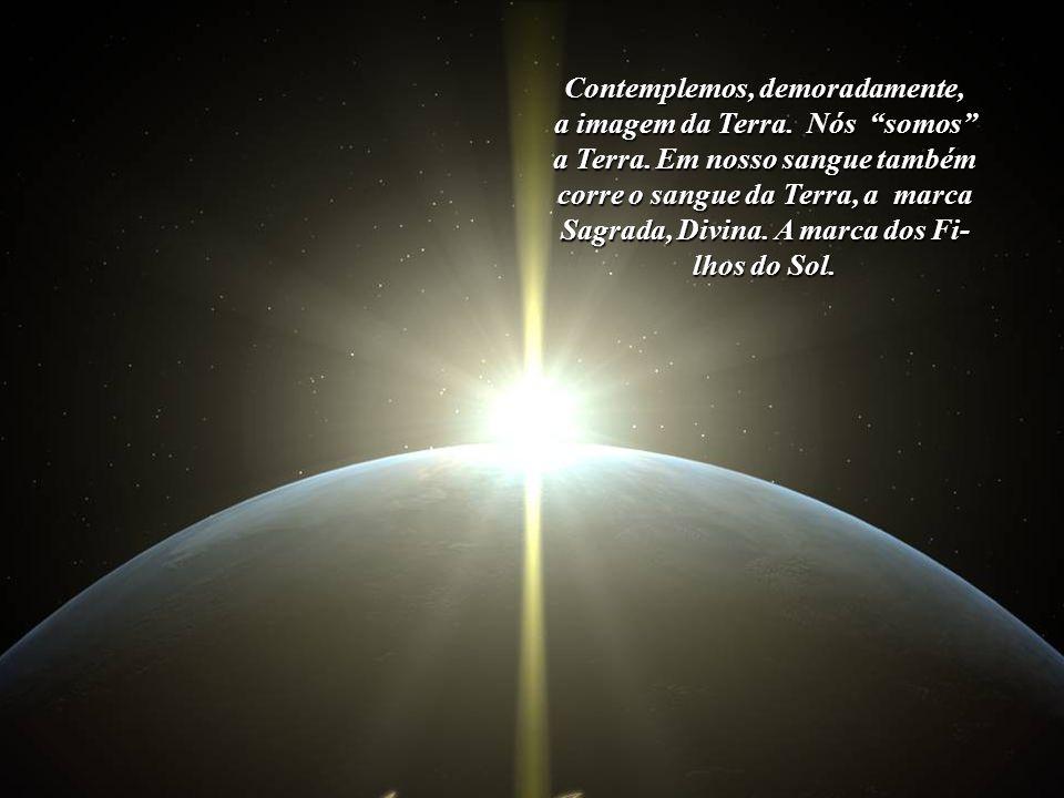 Como Francisco de Assis pregava, estamos irmanados com cada ser vivo. Assim, entremos em comunhão com a Terra e tornemo-nos unos com tudo o que nela v