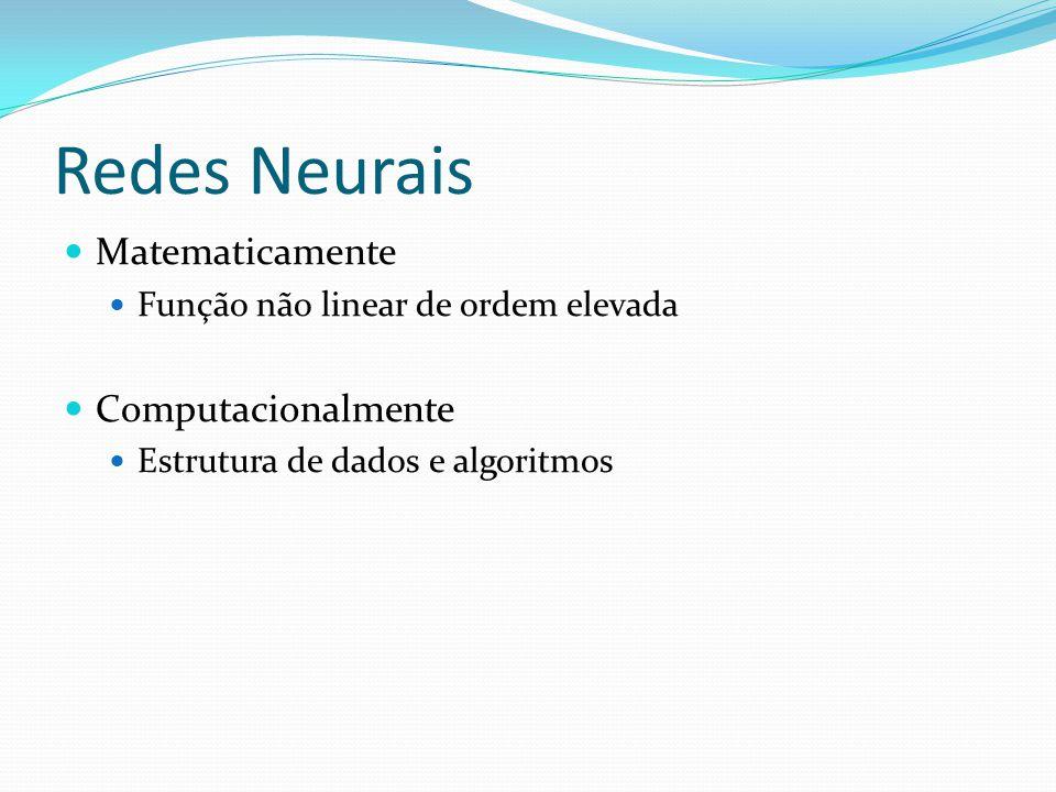 Redes Neurais Matematicamente Função não linear de ordem elevada Computacionalmente Estrutura de dados e algoritmos