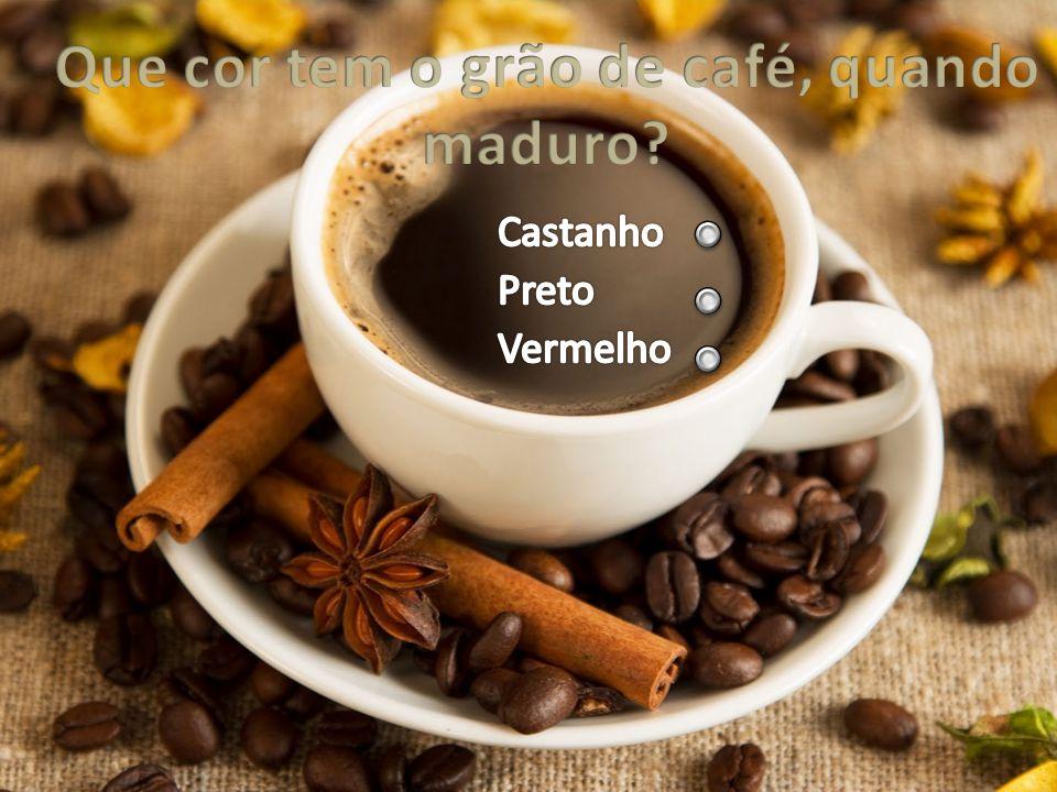 Para poder ser consumido o café deve ser, obrigatoriamente… Torrado Amassado Peneirado