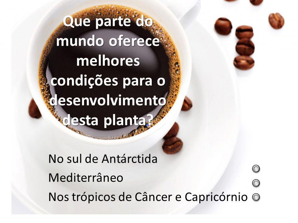 Em que país surge, pela primeira vez, a semente de café? Brasil Etiópia Istambul