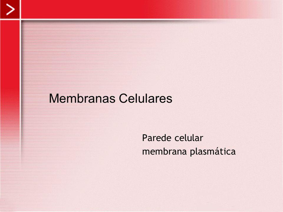 Membranas Celulares Parede celular membrana plasmática