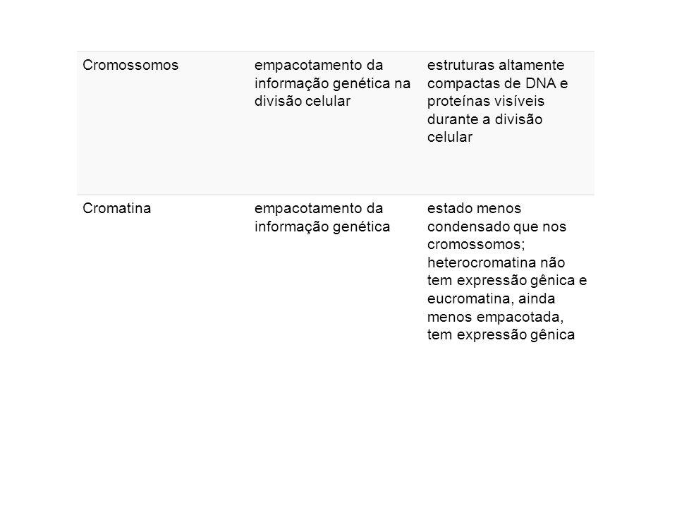 Cromossomosempacotamento da informação genética na divisão celular estruturas altamente compactas de DNA e proteínas visíveis durante a divisão celular Cromatinaempacotamento da informação genética estado menos condensado que nos cromossomos; heterocromatina não tem expressão gênica e eucromatina, ainda menos empacotada, tem expressão gênica