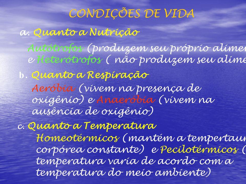 CONDIÇÕES DE VIDA a.