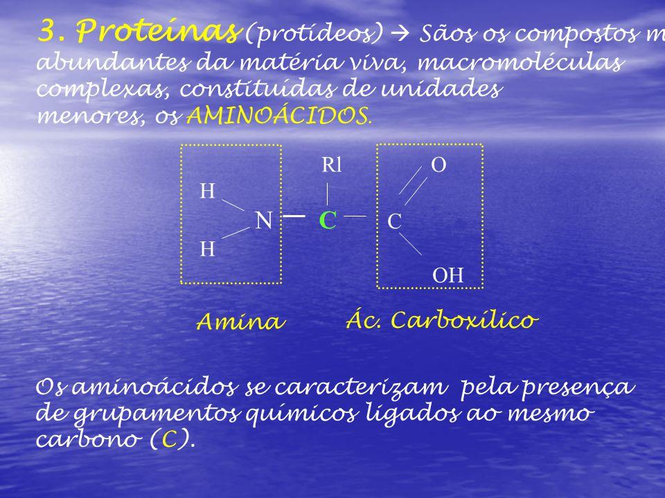3. Proteínas (protídeos)  Sãos os compostos mais abundantes da matéria viva, macromoléculas complexas, constituídas de unidades menores, os AMINOÁCID