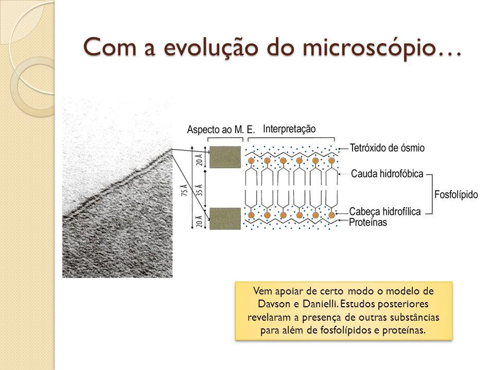 Com a evolução do microscópio… Vem apoiar de certo modo o modelo de Davson e Danielli. Estudos posteriores revelaram a presença de outras substâncias
