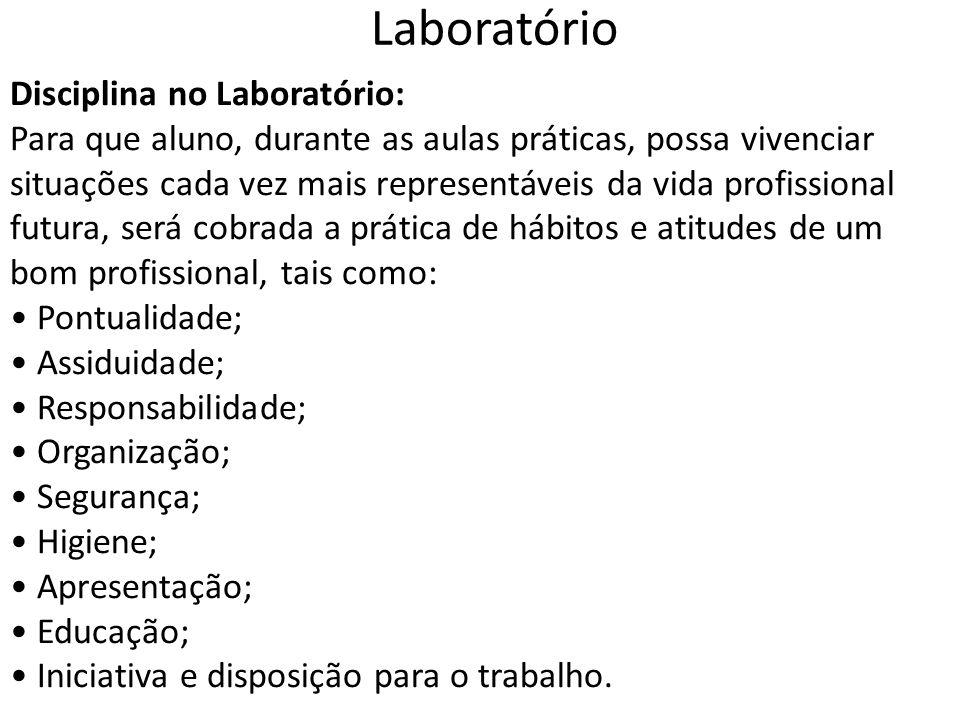 Laboratório Disciplina no Laboratório: Para que aluno, durante as aulas práticas, possa vivenciar situações cada vez mais representáveis da vida profi