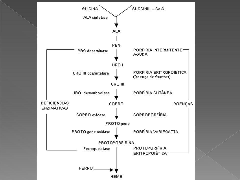  Autossômica dominante, por deficiência da Protoporfirinogênio oxidase, representa uma combinação entre a Aguda Intermitente e a Cutânea Tarda.