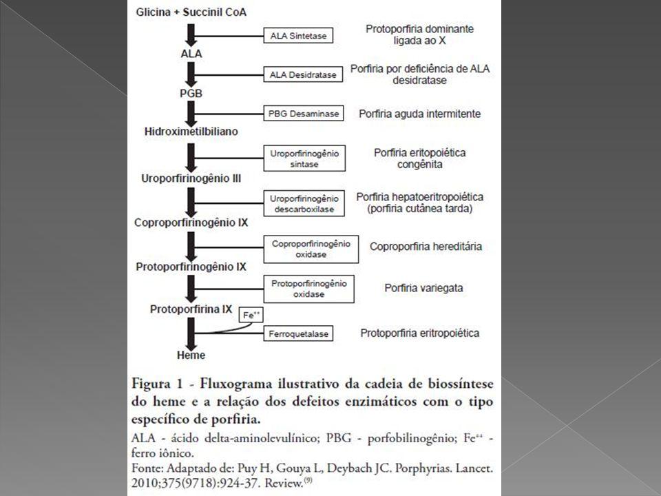  A Porfíria Aguda Intermitente (P.A.I.) tem sido a mais estudada a nível molecular.